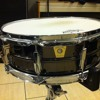 Ludwig black beauty snare 14