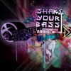 Mr Quiet & Sym - On Promo Mix For Shake Your Bass - DTA - Dyonis