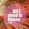 All I Need Is House # 54