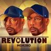 Revolution Spring Tide Album Cover