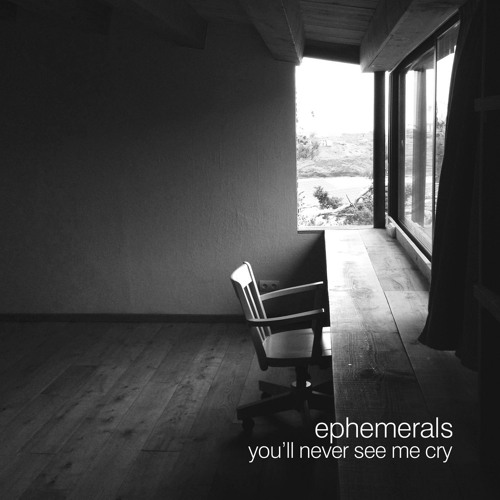 You'll Never See Me Cry (Ambassadeurs Remix)