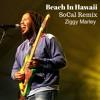 Beach In Hawaii - Ziggy Marley (SoCal Remix)