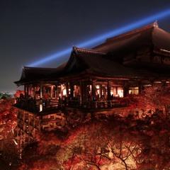 Japanese Trap Music - Autumn Orange - 紅葉 -