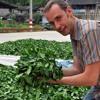 (Unknown Size) Download Lagu Григорий Потемкин о китайском чае и проекте Real China Tea: «Панорама Китая» Mp3 Gratis