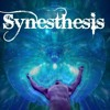project with my brother*elvenstar*called:SYNESTHESIS