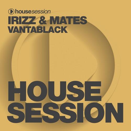 IRIZZ, MATES - Vantablack (Looney B Remix)