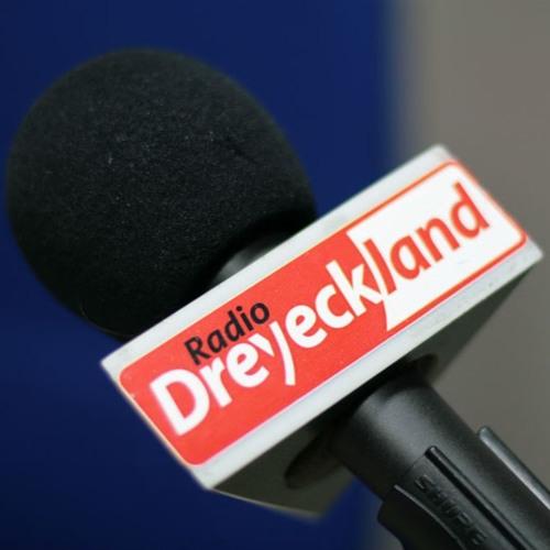 Dreyeckland à la Une (avec l'Alsace) - Steve RISCH
