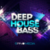 Deep House Bass from 5Pin Media (442 samples)