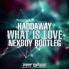 Haddaway - What Is Love (NEXBOY Bootleg)