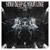 Calvin Harris & Disciples - How Deep Is Your Love  (LIAM & Raz & WildVibes Remix...
