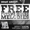 What About Free Future House Melodies