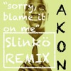 Sorry, Blame It On Me - AKON (Slinko Tropical House REMIX) FREE DOWNLOAD