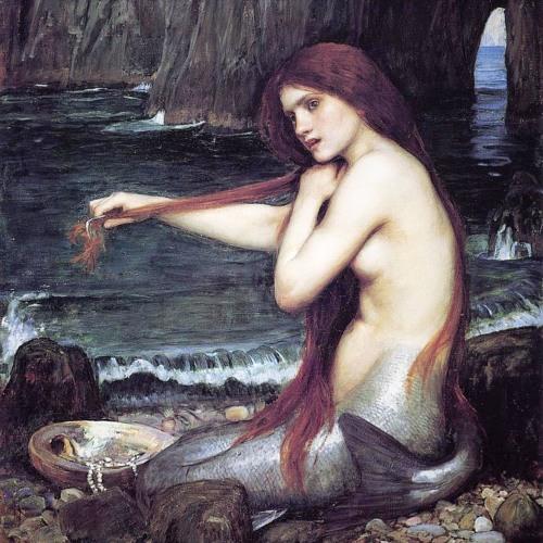 The Mermaid's Reverie
