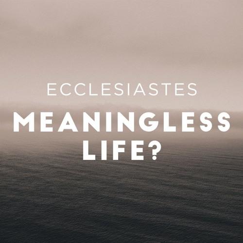 Climb the Ladder: Ecclesiastes 6:1-12