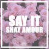 Say It (Tory Lanez Shemix) By ShayAmour x Pen By 12AM