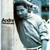 Karna Ku tau Engkau Begitu - Andre Hehanusa (Cover) by PriagaDesman
