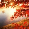 Dj Tum In Da Mix - Autumn Vol 1