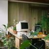Windows 95 N' Chill