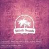 Oleska Ft. Martin Wagler & Laura James - Hollow (Original Mix)[Exclusive Premiere][Free Download]