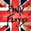 Pink Floyd - The Fletcher Memorial Home - Guitar Solo cover