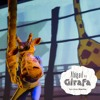 Girafas Gostam De Dançar