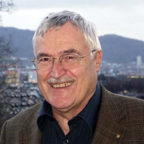 Strategie-Experte Albert Stahel zu Wikileaks & Co.