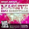 Massive EDM Essentials [80 NI Massive Presets - Future, Progressive, Electro + Drum Samples]