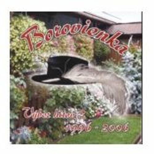 CD-11 Borovienka - Výber hitov2 - rok 2008