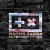 Martin Garrix - Forbidden Voices (Blitz Brothers Remix)