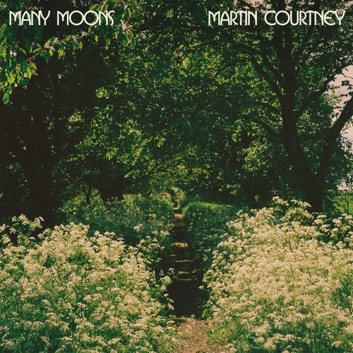 Martin Courtney - Airport Bar