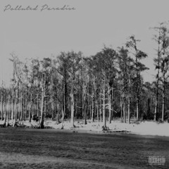 Polluted Paradise (feat. $uicideboy$) [Prod. $crim]