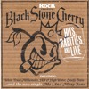 Black Stone Cherry - Blame It On The Boom Boom  (Live - Download 2013)