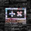 Martin Garrix - Forbidden Voices [Fabian Chisté Remake]