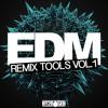 Hy2rogen EDM Remix Tools Vol. 1 [Sample Pack]