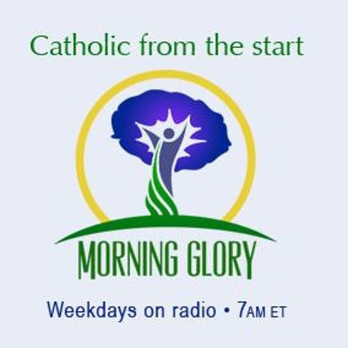 Morning Glory on a Thursday, October 8, 2015