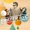 Robin Schulz / Lilly Wood - Prayer In C (NIELS VAN GOGH Remix)