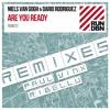 Niels Van Gogh & Dario Rodriguez - Are You Ready (Paul Vinx Mix)