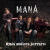 Ojala Pudiera Borrarte - Maná Cover