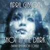Shot in the Dark (Within Temptation Cover)