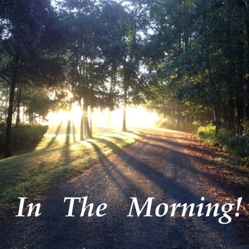 In The Morning
