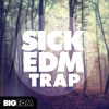 Big EDM - Sick EDM Trap [Construction Kits, Melody Loops, Presets, Kicks] Beatport TOP 10 !