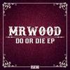 Download MrWood - Do or Die ft. Charlotte Haining (Original Mix) Mp3