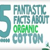5 Facts About Cotton - Natracare