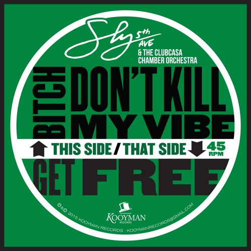 Sly5thAve- Bitch Don't Kill My Vibe (Kendrick Lamar) feat. The Clubcasa Chamber Orchestra