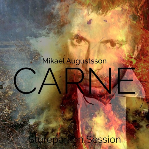 Mikael Augustsson - CARNE