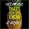 Nico & Vinz - That´s How You Know (Nilzen Remix)