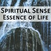 Spiritual Sense - Essence Of Life (original Mix)