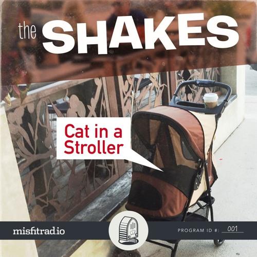 Cat in a Stroller Cover Art
