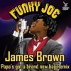 Funky Joe - Papas got a brand new Bag [FREE DOWNLOAD]