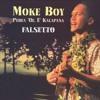 Moke Boy-Hawaiian Kickboxer